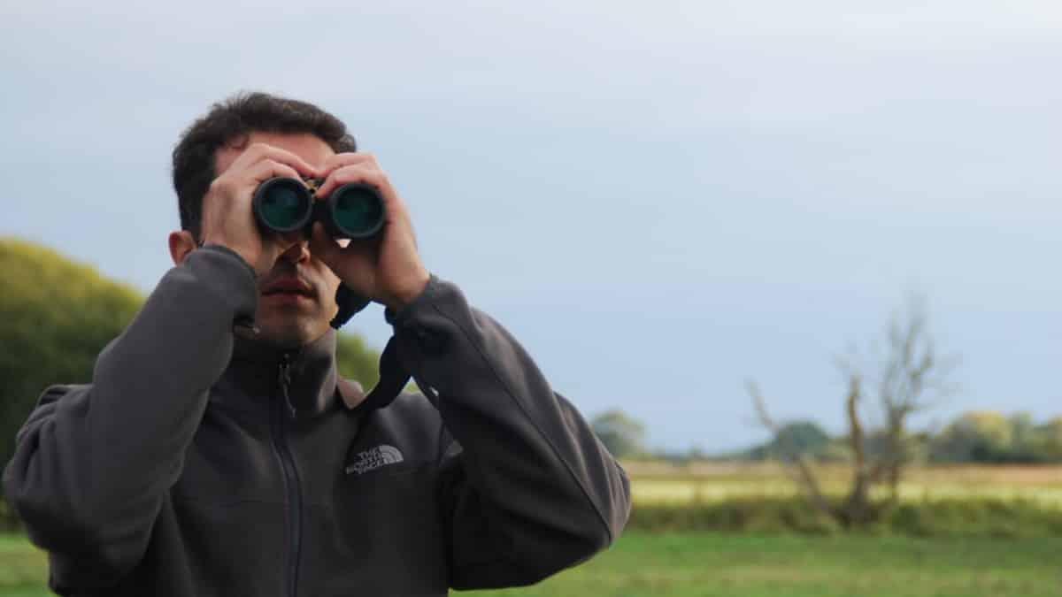 Artemisan estudiará el estado de las aves cinegéticas en la Comunidad de Madrid