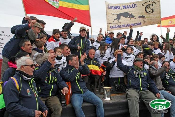 La galga Malú de Villadiezma se proclama campeona de España