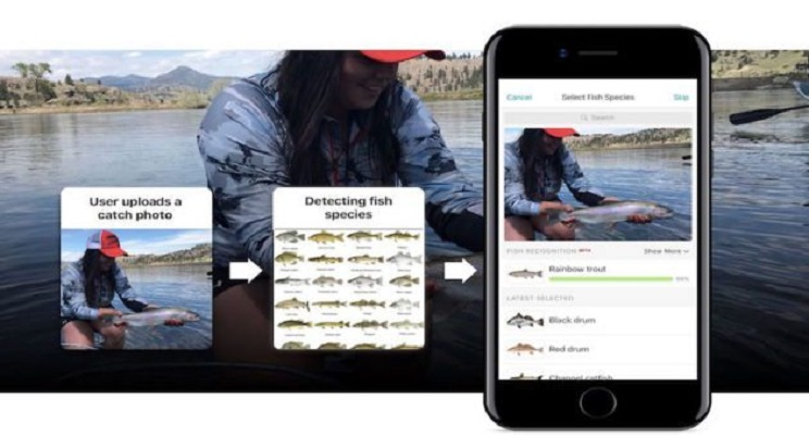 Esta app de pesca te permite identificar tus capturas