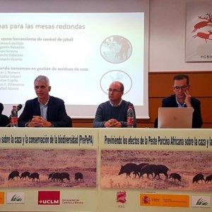 Científicos, cazadores, gestores y conservacionistas unen fuerzas para prevenir la peste porcina en España