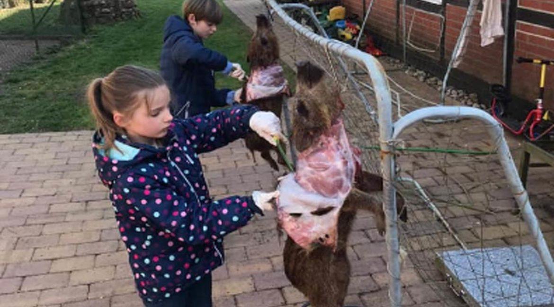 Así muestran la naturaleza a través de la caza a los niños de ciudad en Alemania