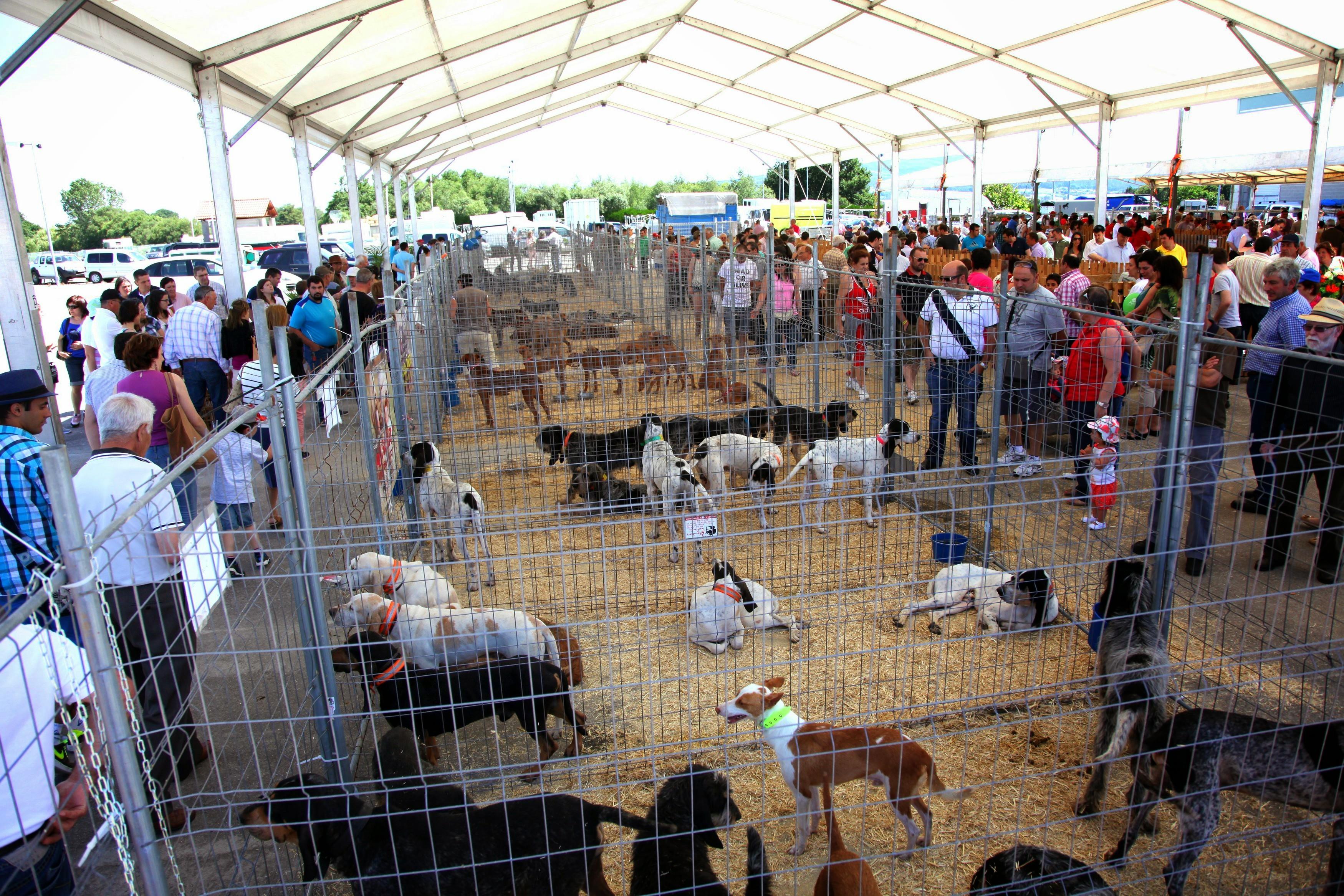 I Feira de Cans de Caza