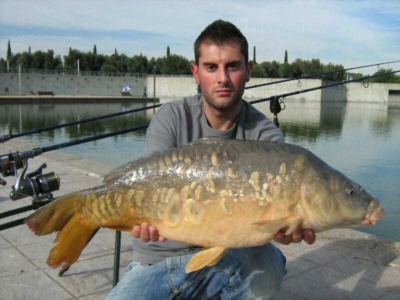 Destinos de pesca (parque Juan Carlos I) Madrid