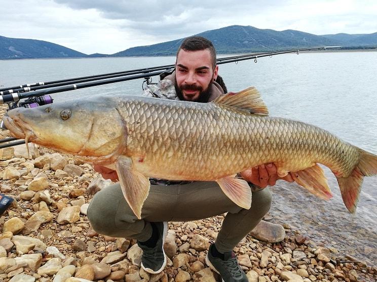 Pesca un barbo de más de 10 kilos en un pantano de Ciudad Real