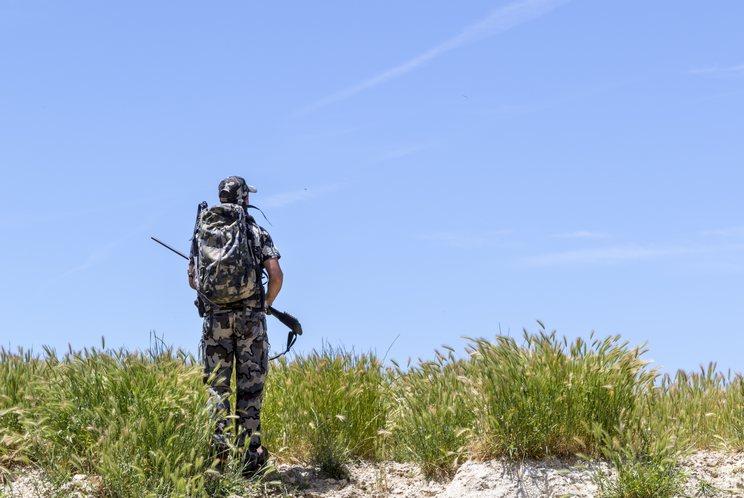 """La Universidad de Cambridge: """"Prohibir la caza provocaría más daños que beneficios"""""""