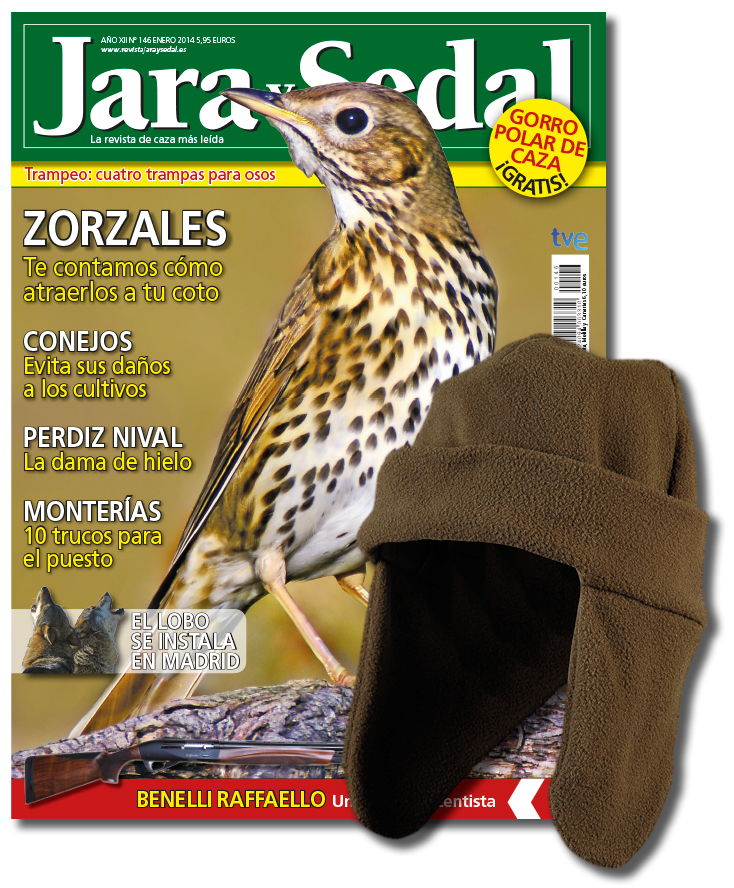 JS-001+gorro