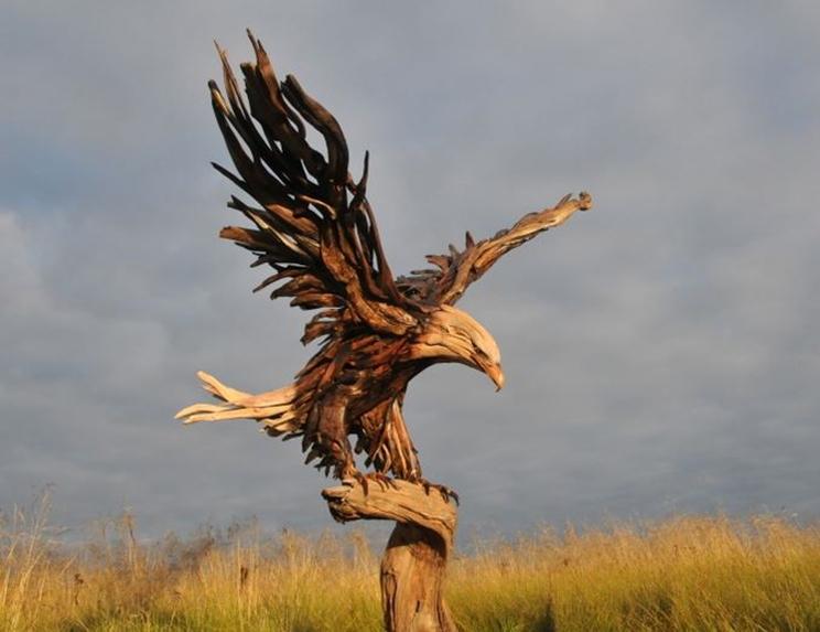 Águila creado por raíces de árboles / Fotografía: Jeffro Uitto