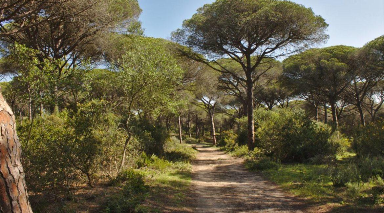 Cazadores de Barbate sumarán la Limpieza del Parque Natural de La Breña al reto #TrashTag