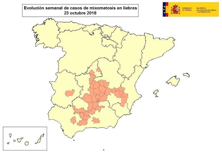 La mixomatosis alcanza ya a liebres de al menos 12 provincias en 5 comunidades autónomas