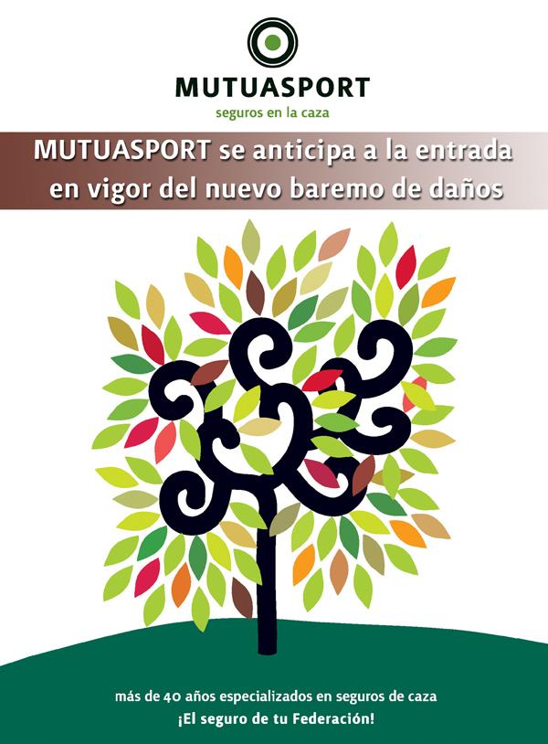 MUTUASPORT se anticipa a la entrada en vigor del nuevo Baremo de Daños