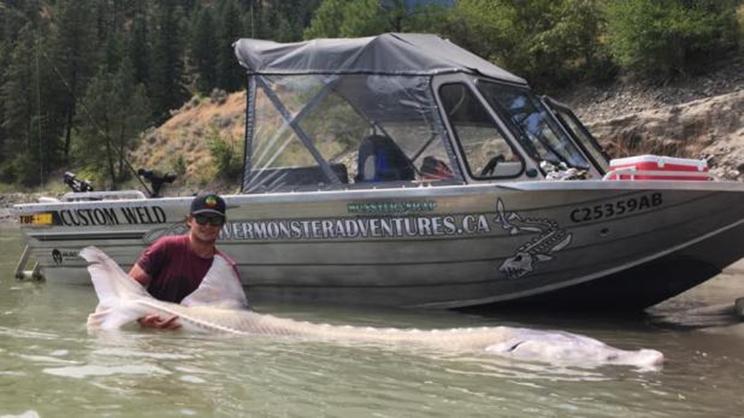 Esturión capturado en 2016 / Fotografía: Esturión capturado en Canadá / Fotografía: River Monster Adventures
