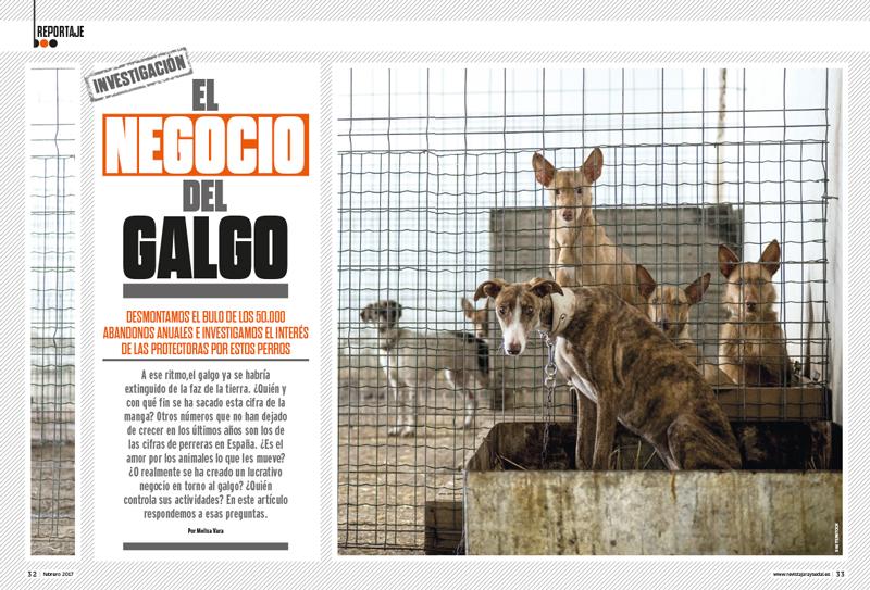 Negocio-Galgo