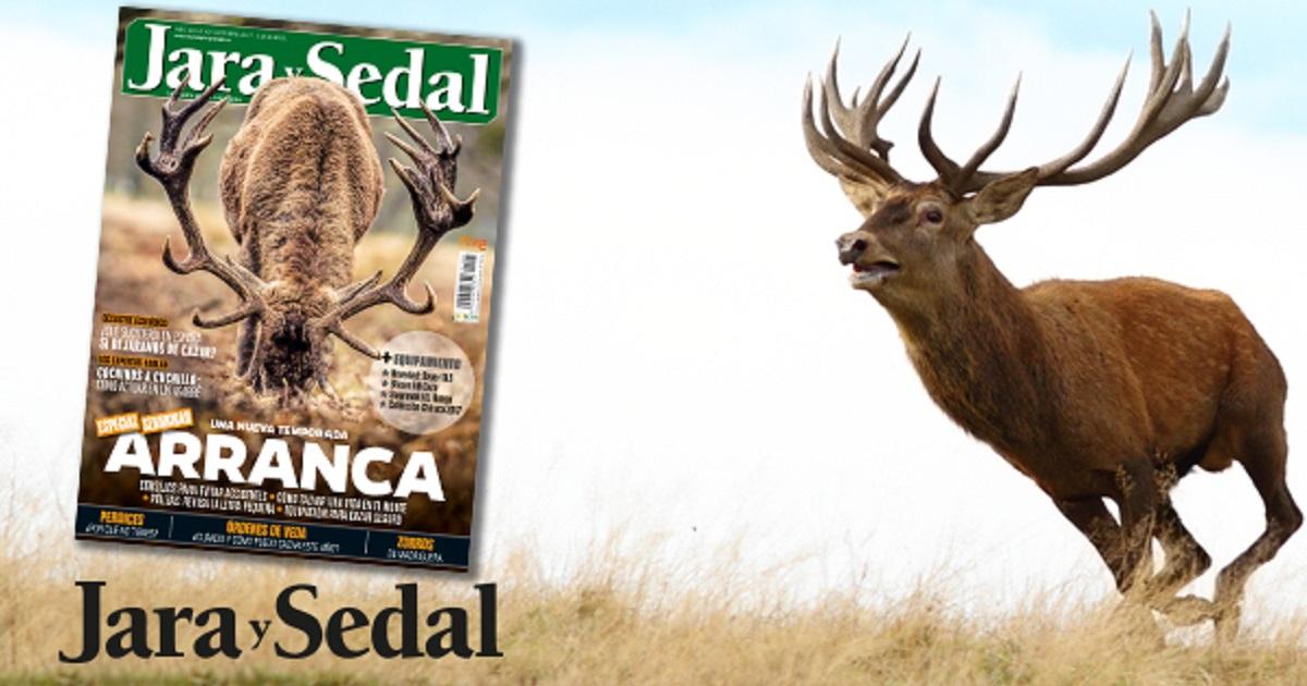 En octubre gratis con Jara y Sedal… ¡unos exclusivos calcetines de caza!