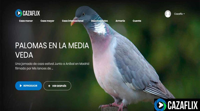 Hoy en Cazaflix: Palomas en la media veda