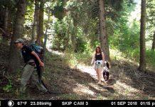 Cámara trampa graba una pareja robando / Fotografía: www.gohunt.com