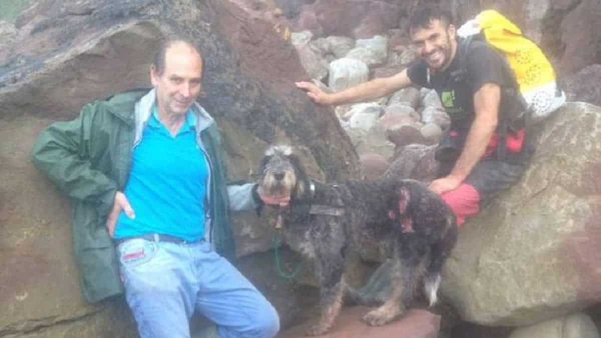 Sus dos perros persiguen a un jabalí, los pierde… y así encuentra ¡a los tres! dos días después