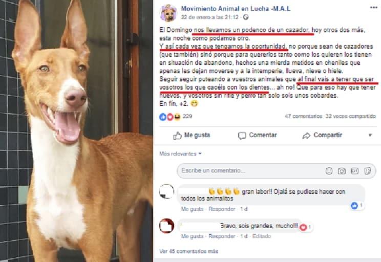 Animalistas se jactan en las redes sociales de llevarse perros de cazadores