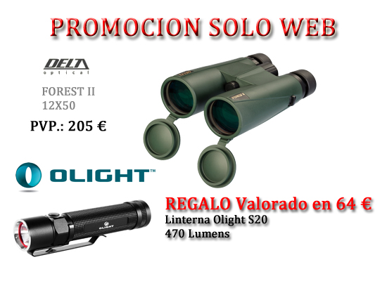 PROMO WEB 2