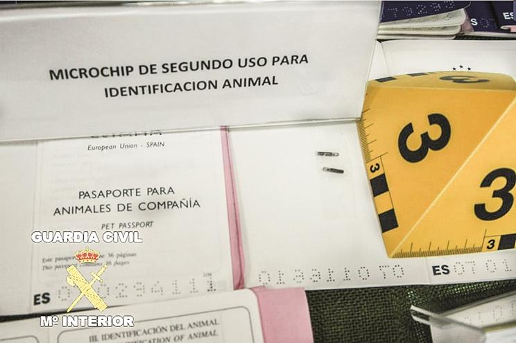 Documentos sobre microchips de galgos