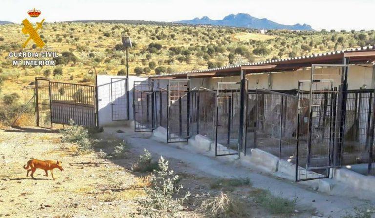 Foto de las instalaciones de la rehala.