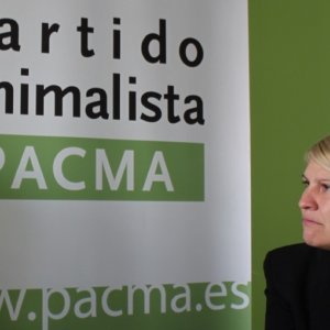 «En términos de democracia interna el PACMA está más a la derecha que VOX»
