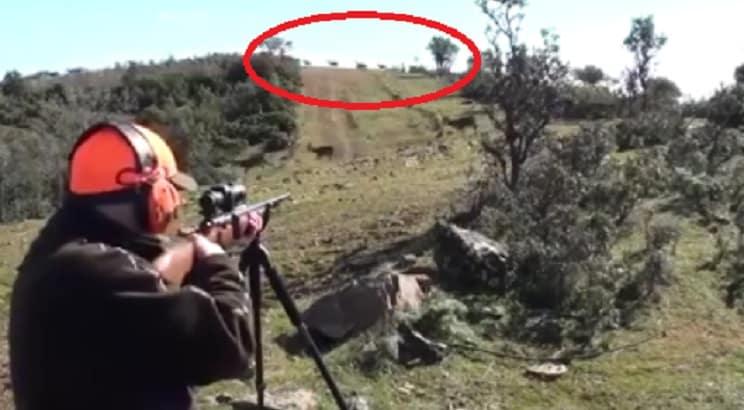 Le entran decenas de ciervos y su reacción le hace salir a hombros entre los cazadores