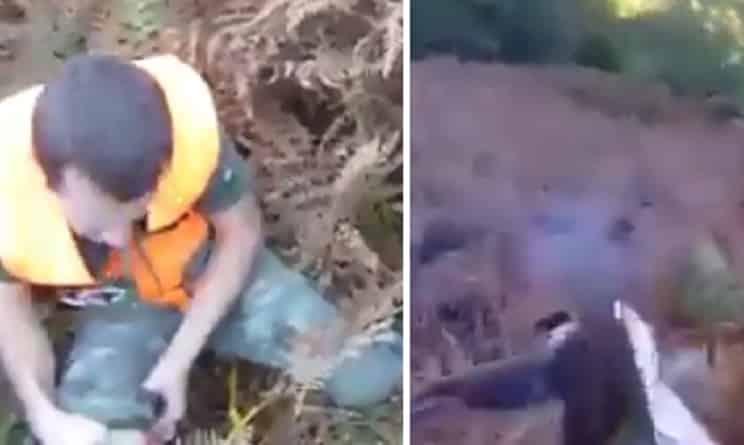 Un jabalí ataca y da un navajazo a un cazador por sorpresa