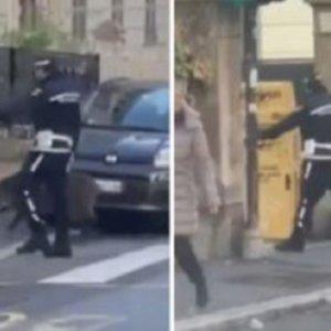 Un jabalí se cuela en un pueblo y se la juega a la Policía durante más de un día