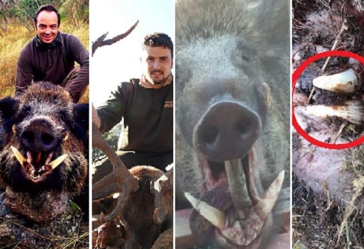 Los 10 'cronicones' de caza más leídos por los cazadores españoles durante 2019 en Jara y Sedal