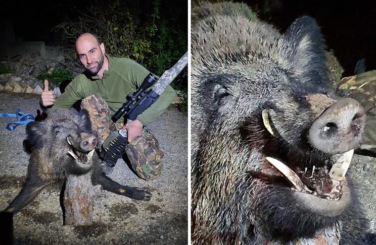 Caza un gran jabalí de 130 kilos en una «noche de perros»