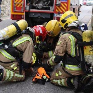 Se monta un tremendo dispositivo para reanimar a un conejo intoxicado en un incendio en Galicia