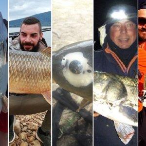 Los doce peces más espectaculares pescados en España durante 2019