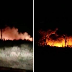 Cazadores de Cádiz evitan una tragedia medioambiental al guiar a bomberos y Seprona hasta un incendio