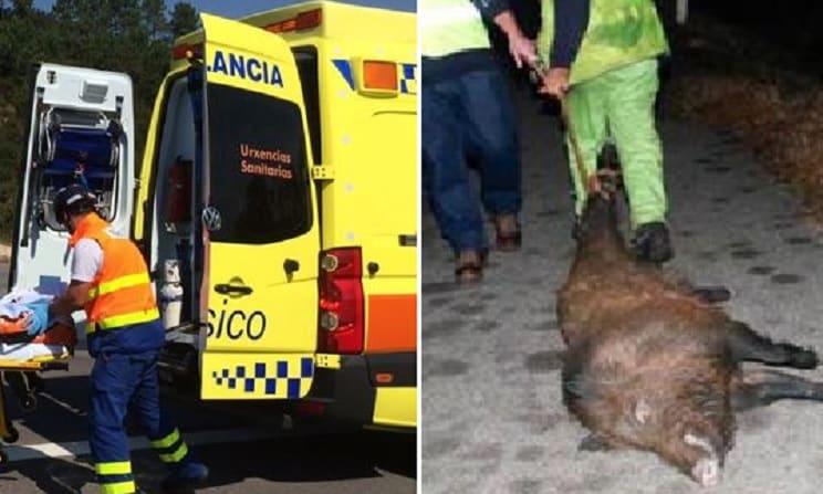 Herida una mujer en una colisión múltiple causada por un jabalí en Galicia