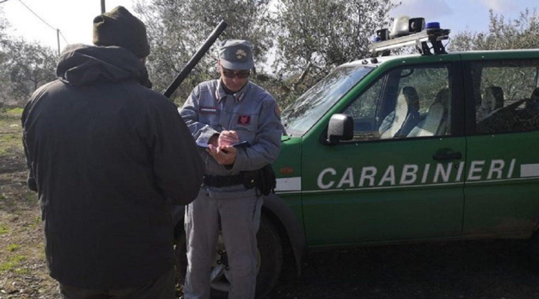 Pillan a un furtivo por publicar en Facebook la foto del jabalí que había matado