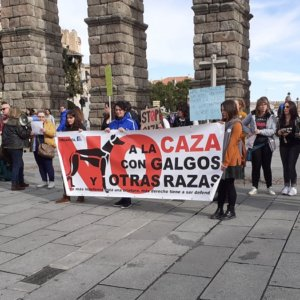 Las manifestaciones contra la caza fracasan en toda España con un irrisorio apoyo