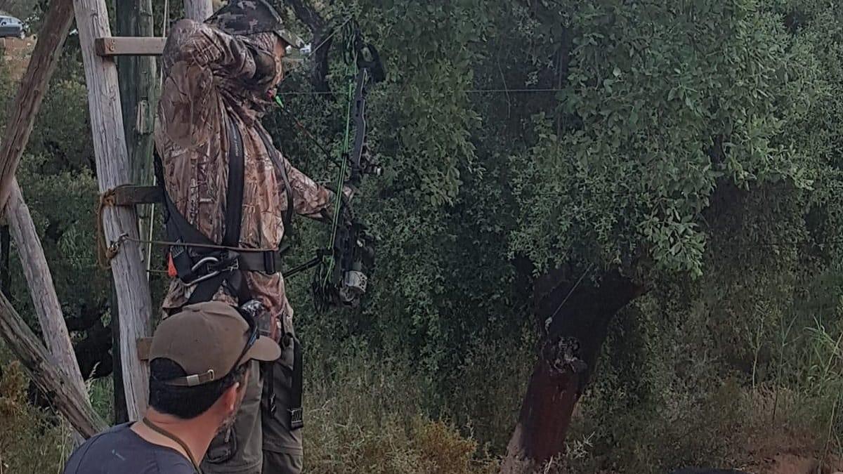 La FAC crea un grupo de arqueros para cazar jabalíes en zonas urbanas de Andalucía