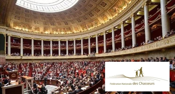 La caza experimenta avances históricos en Francia