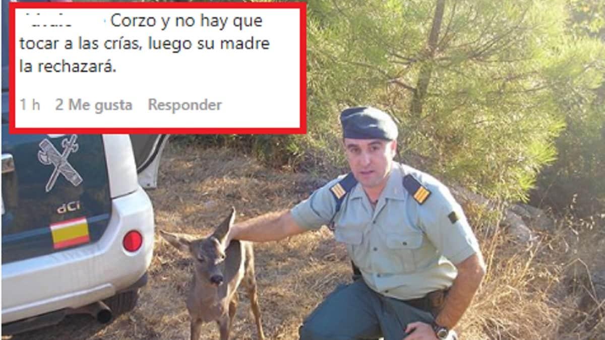 Guardia Civil corcino