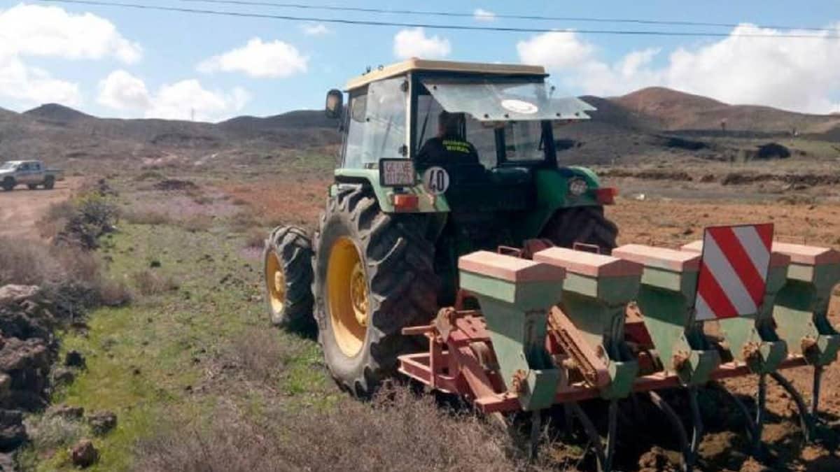 Cazadores de Lanzarote siembran 9.000 kilos de cereal para alimentar a la fauna
