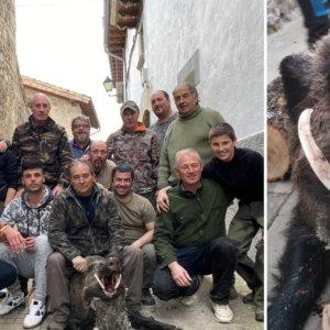 Las increíbles navajas de este jabalí de 80 kilos causan furor entre los cazadores