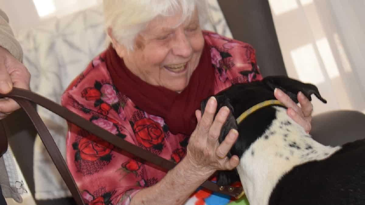 Cazadores extremeños participan con sus perros en una terapia para la tercera edad