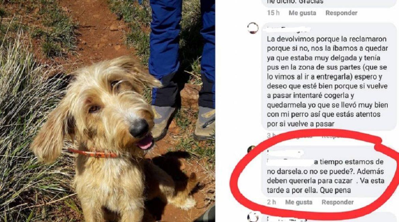 Salen de caza y una senderista se lleva a su perra: «No nos la quieren devolver»