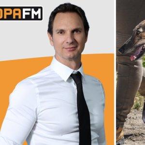 Cárdenas se traga la 'fake news' animalista de los 50.000 galgos abandonados
