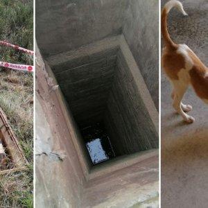Un cazador hace un llamamiento para sellar un pozo en el que casi muere su perra
