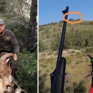 Acude a cazar a una batida de 20 euros y vive el lance de su vida: un extrardinario arruí