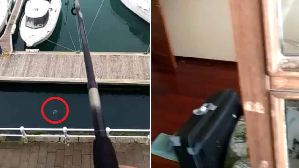 Un hombre pesca un pez desde el salón de su casa en pleno confinamiento