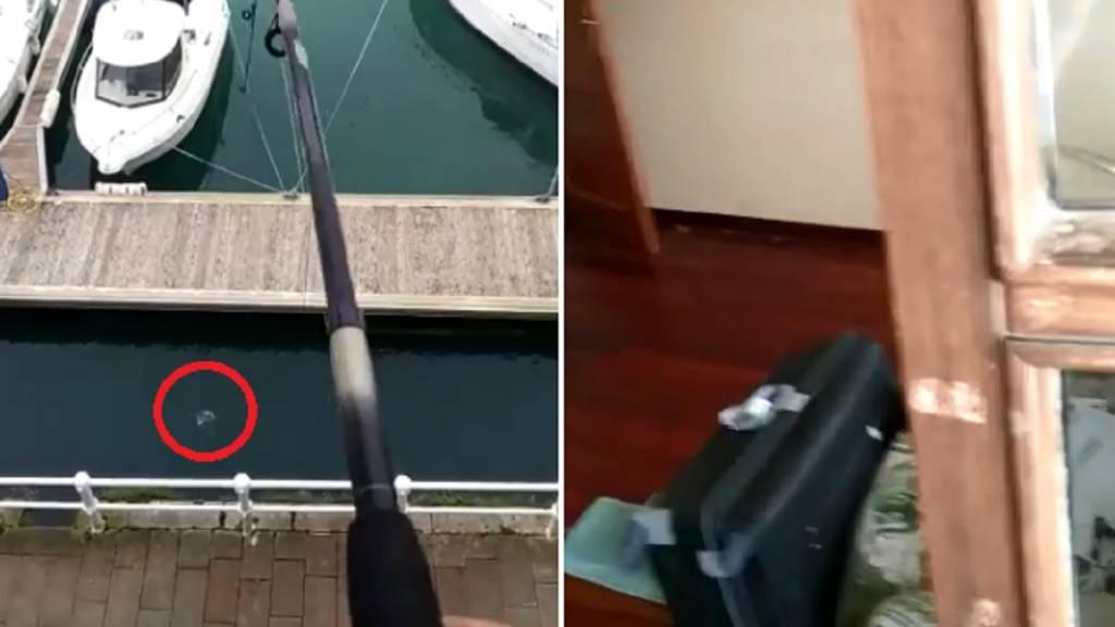 pesca Estado de alarma