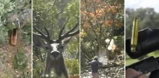 caza vídeo