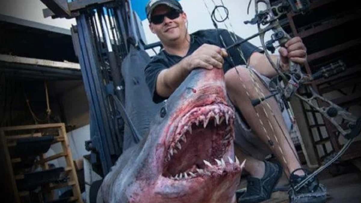 Captura con arco un tiburón de 367 kilos y entrega la mitad de su carne a organizaciones benéficas